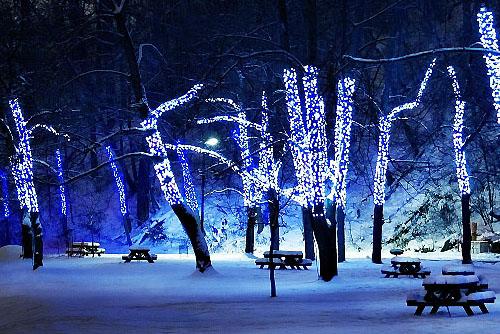 клип лайт светодиодный синий на елку уличный купить минск