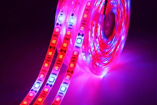 светодиодный светодиодные фитолампы для растений и рассады светодиодами фито